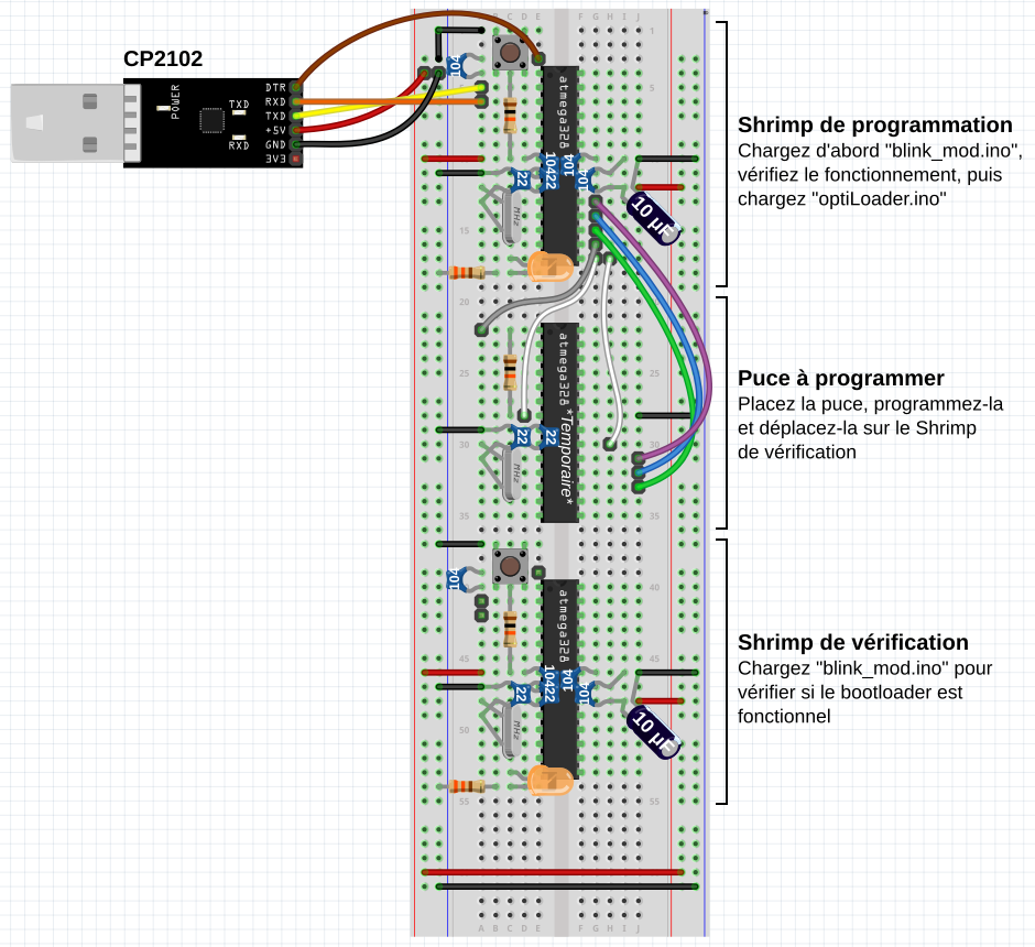 Circuit Fritzing du Shrimp-Optiloader